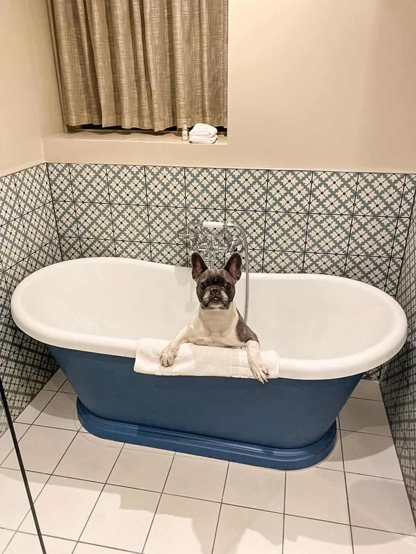 Bath time at the Richmond Hill Hotel