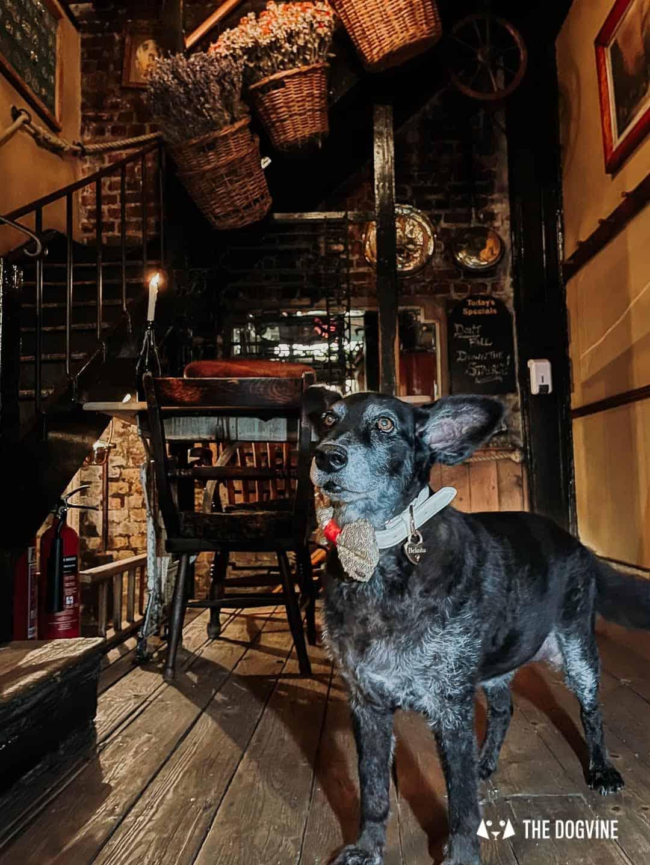 Maggie Jones's Restaurant Kensington