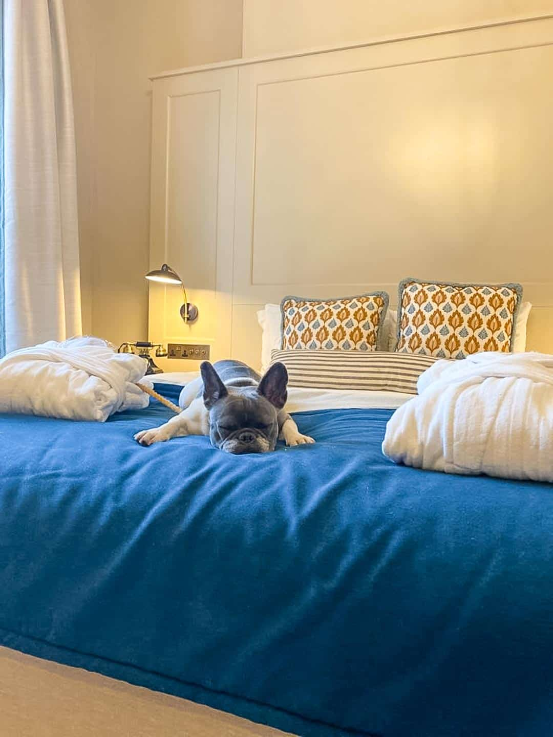 It's hard work reviewing the dog-friendly Richmond Hill Hotel